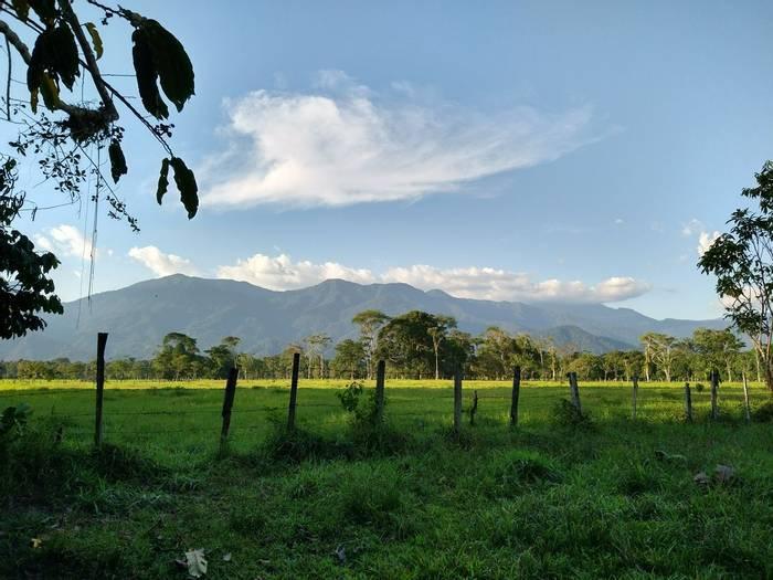 Putumayo landscape (Robin Smith).JPG