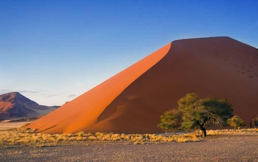 Wildlife & Dunes of Namibia