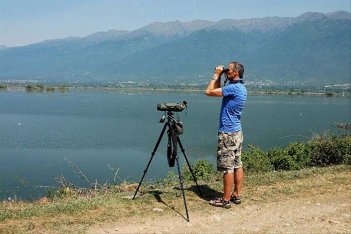 Birdwatching on the edge of Lake Kerkini (David Morris)