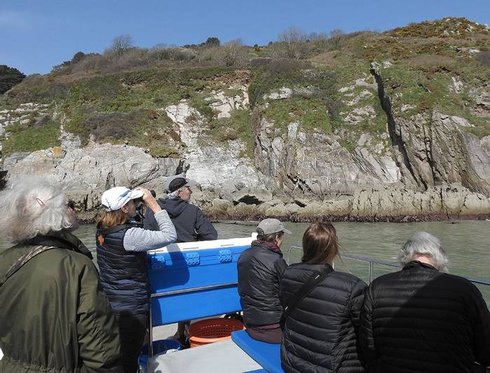 A Wildlife Cruise on the River Dart (Mike Langman)