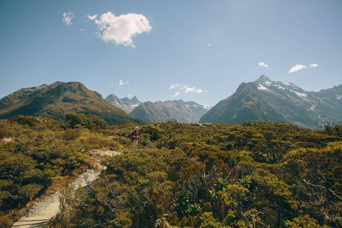 Te Anau - Key Summit Routeburn  - Agent Photo.jpg