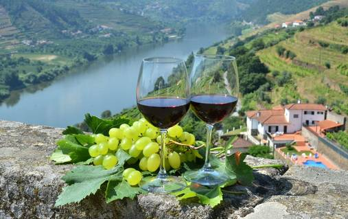 Douro Valley Members Exclusive Guided Walking Holiday