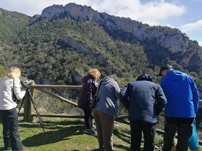 Scanning Arbayun Gorge (Pablo Perez).jpg