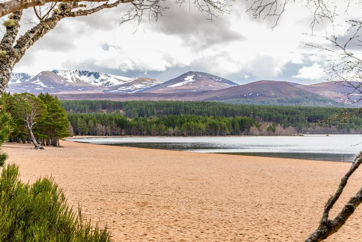 Cairngorms - Guided Trail - AdobeStock_220349304.jpeg