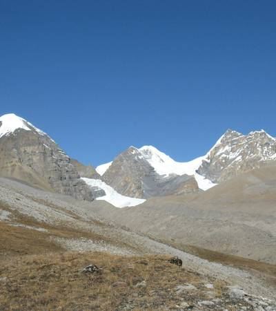 Near Bhrikuti Base Camp