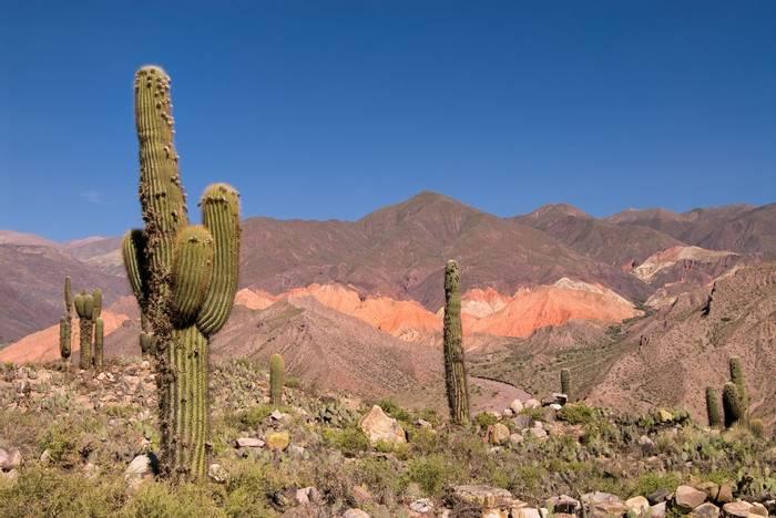 Humahuaca Canyon