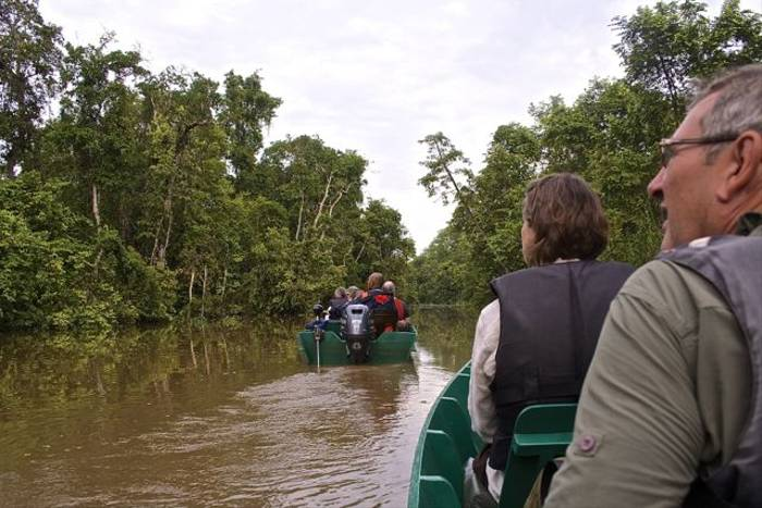 Boat on the Kinabatangan River (Dani Free)