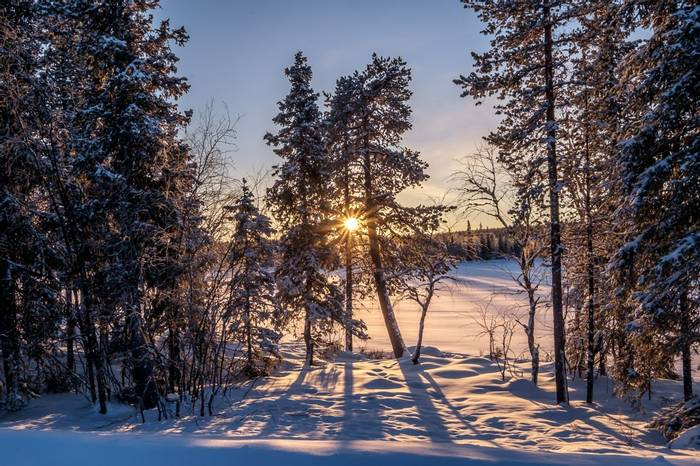 Swedish Lapland  (Ann Miles) (2)