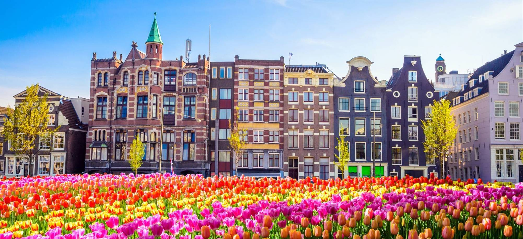 Amsterdam 4.jpg