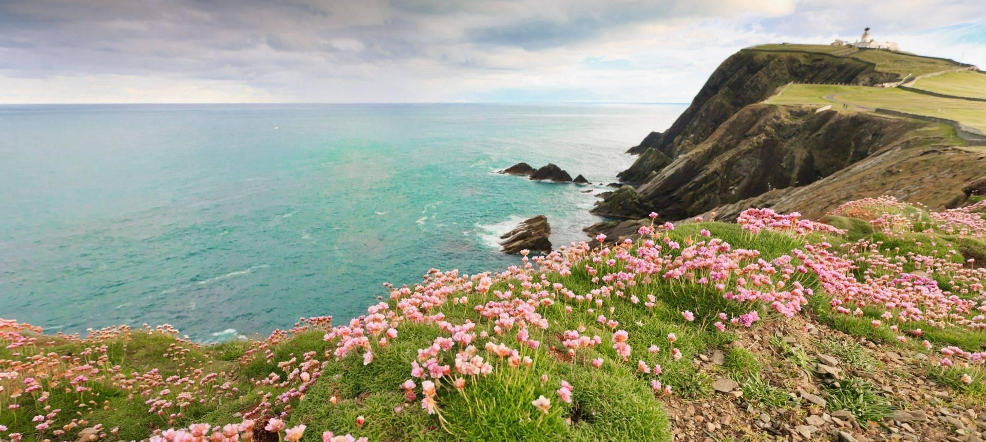 Sumburgh, Shetland Shutterstock 99993272