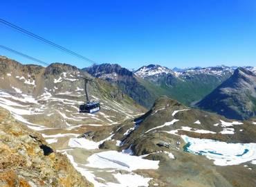 Switzerland - Alpine Flowers of the Upper Engadine