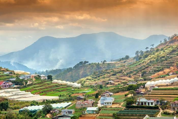 Rice Fields, Dalat, Vietnam shutterstock_366190298.jpg