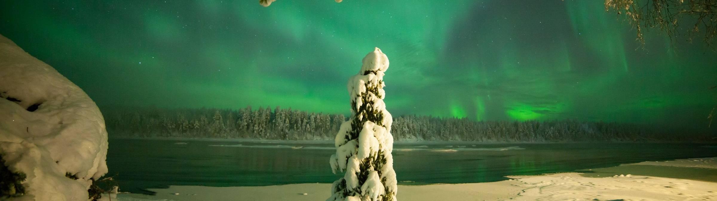 Credit - Antti Pietikainen (248).jpg