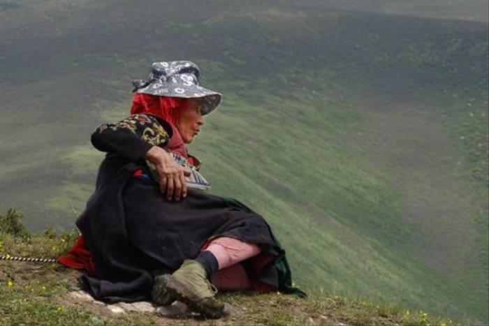 Minding her Yaks (Gordon Rae)