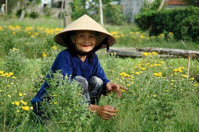 Vietnam discover recover
