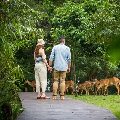 Adventure & Wellness Honeymoons